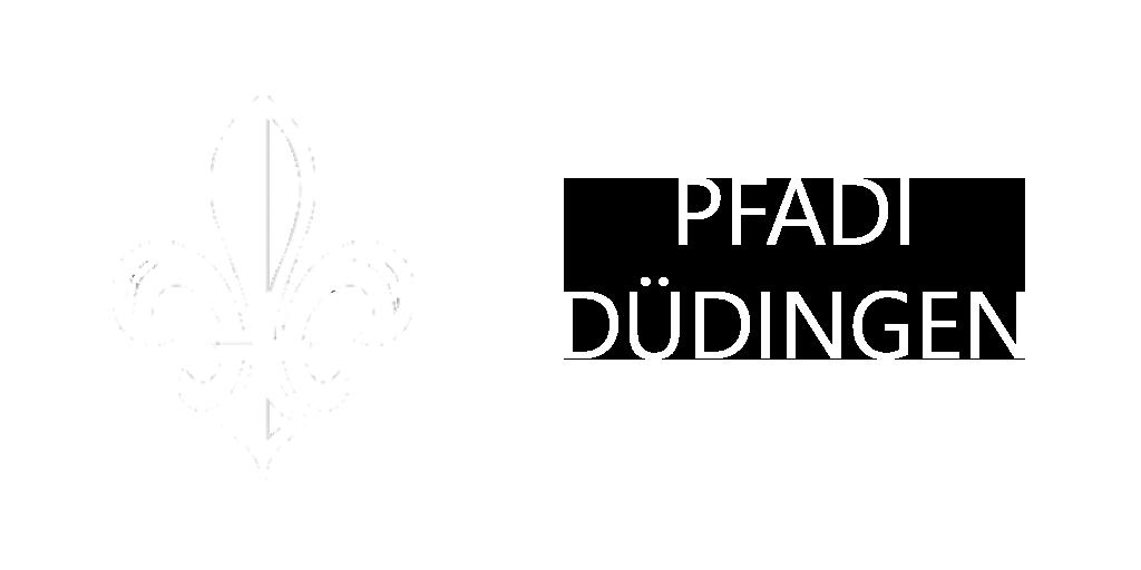 Pfadi Düdingen